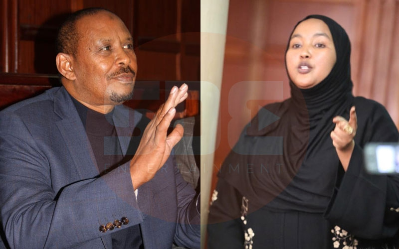 MP called me stupid before punching me, says Fatuma Gedi